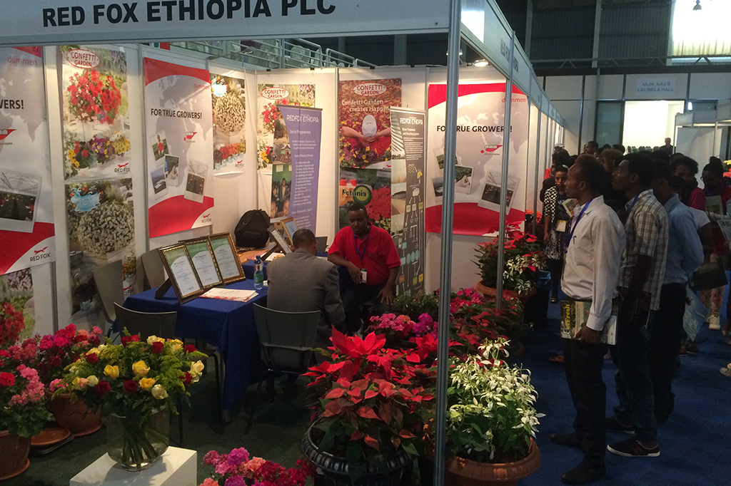 HortiFlora Expo 2019 - Ethiopia's International Floriculture